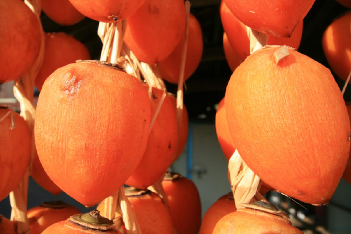 トロトロ ねっとり あんぽ柿