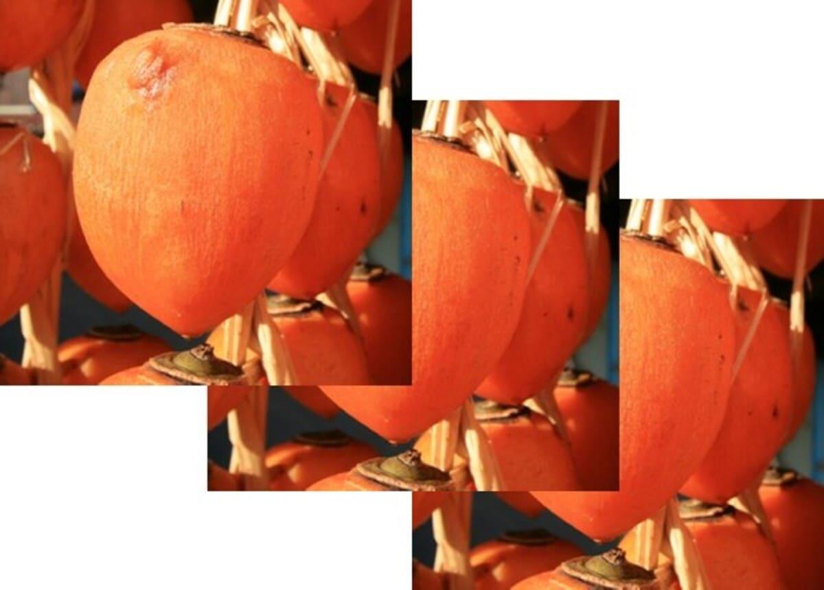 干し柿 吊るし柿 あんぽ柿