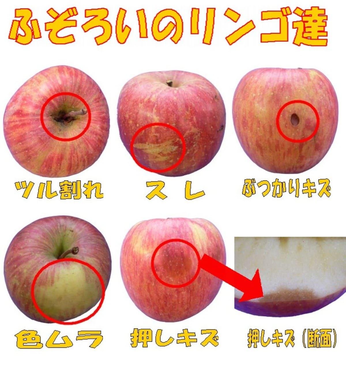 ご家庭用訳ありキズりんご
